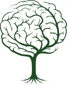 Brain tree illustration, Traumatic Brain & Personal Injury